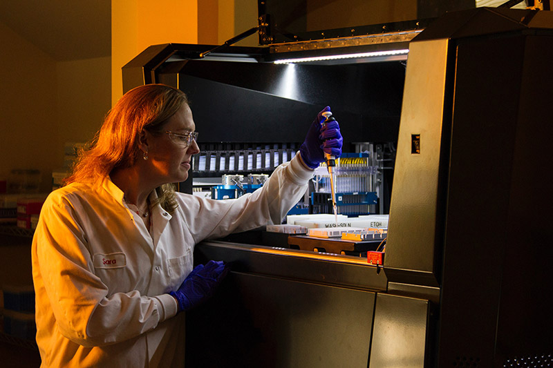 Scientist Working In Labratory